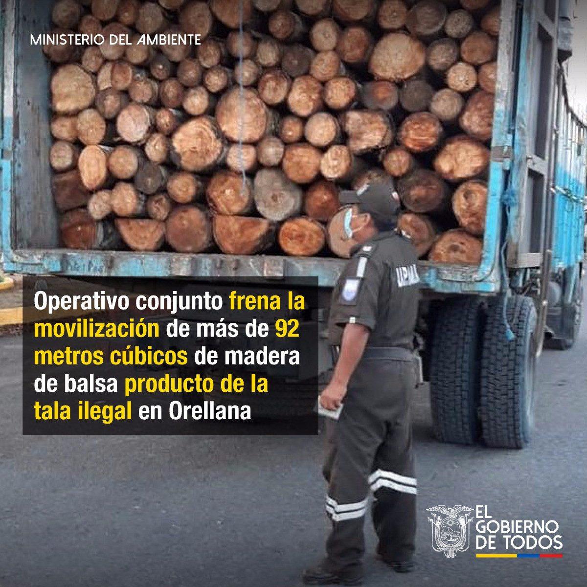 Operativo frenó la movilización de 92 metros cúbicos de madera de balsa producto de la tala ilegal en Orellana