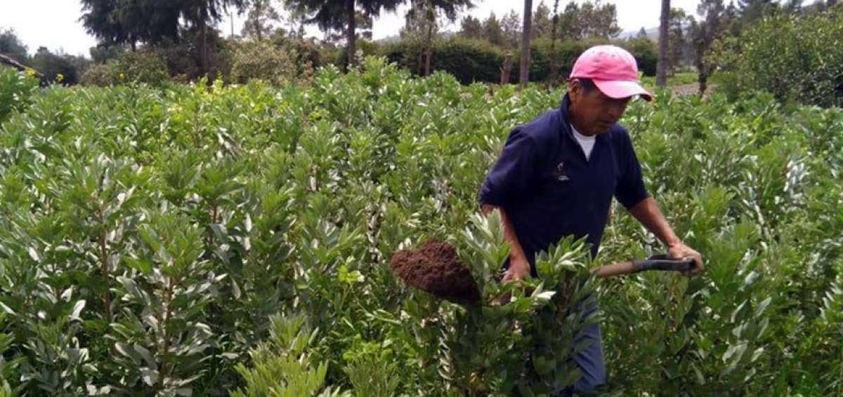 Empresa española es condenada por abusar de trabajadores ecuatorianos