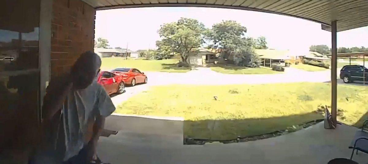 VIDEO | una serpiente lo mordió en la cara cuando abría la puerta para entrar a casa de un amigo