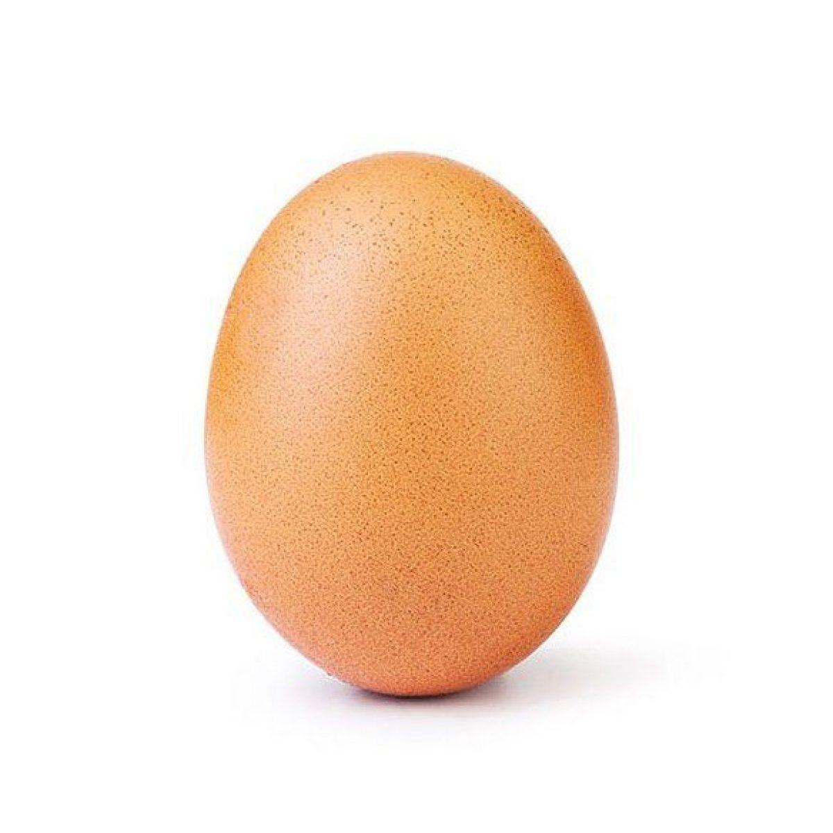 VIDEO   El verdadero propósito del huevo que logró récord de 'likes'