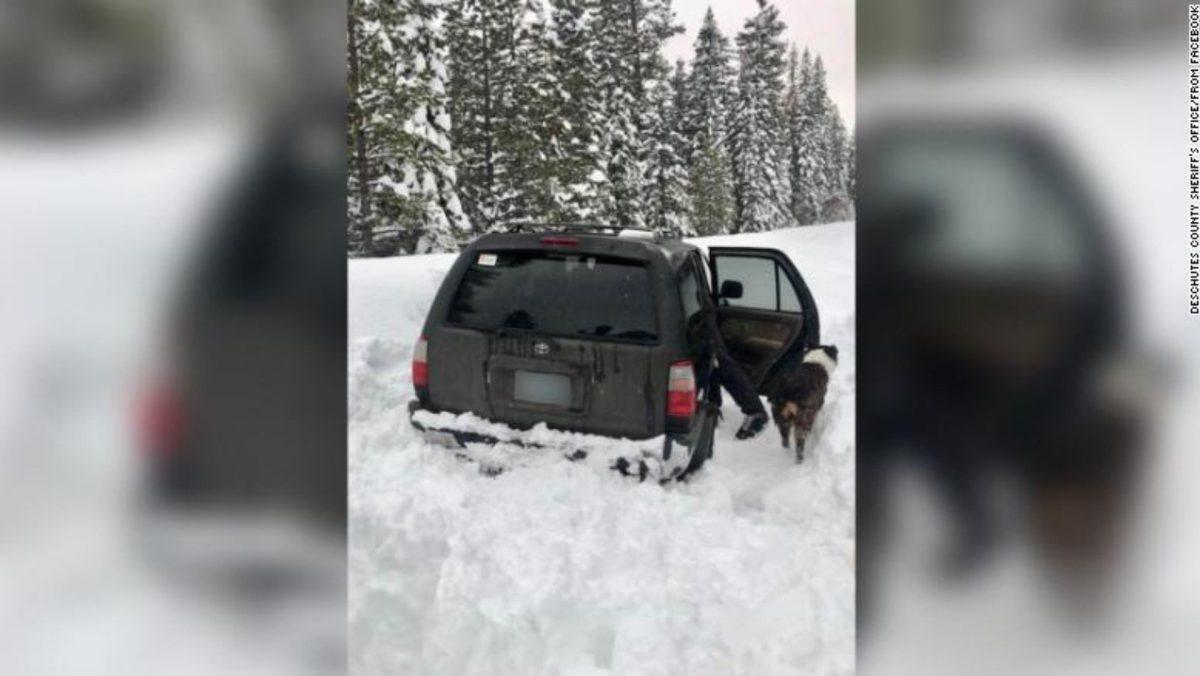 Hombre sobrevive atrapado en un auto con su perro por 5 días