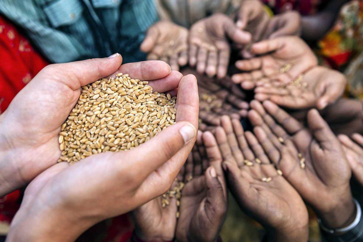 Jefe de la ONU alerta contra crisis alimentaria en el mundo por la pandemia