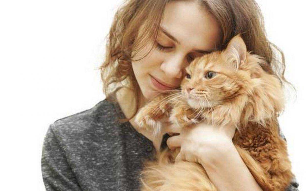 La relación entre tu personalidad y la de tu gato es más profunda de lo que crees
