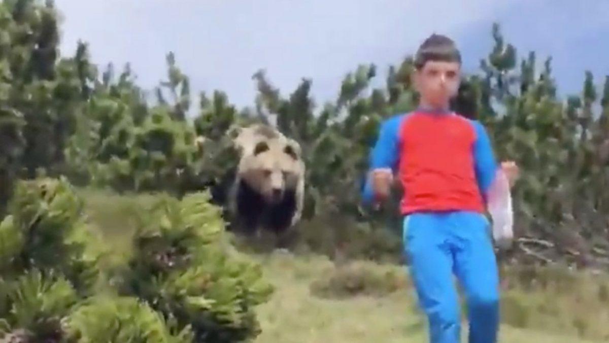 VIDEO: Niño escapa lentamente de un oso mientras su padres graban la situación