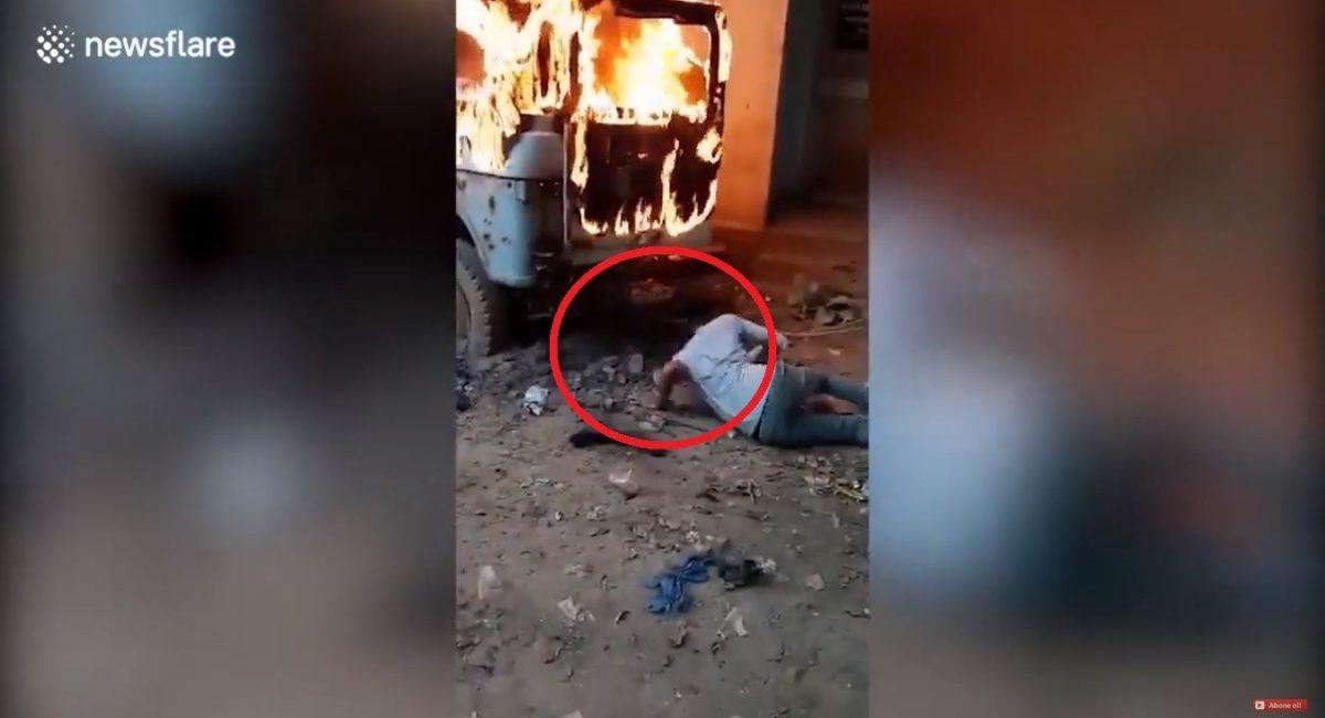 VIDEO   Rescatan a cachorros abandonados debajo de un carro en llamas