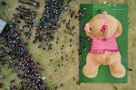 FOTOS | Así luce Xonita, el oso más grande del mundo
