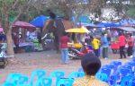 VIDEO: una joven se aferra a la trompa de un elefante y se desata el caos