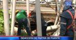 VIDEO: Empezó la remoción de partes de puente colapsado en Colimes