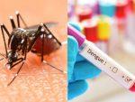 Dengue es más preocupante que el coronavirus en Argentina