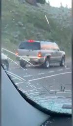 Detienen su auto para ver pasar a una manada de bisontes y todo termina de forma lamentable