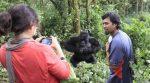 Estudio: Selfis de turistas podrían poner en riesgo la vida de los gorilas en África