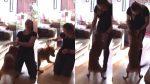VIDEO EMOTIVO: Perro se vuelve 'loco' de la emoción al ver a su dueña después tres años