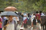 Extraño fenómeno natural sorprendió a los japoneses y no es el coronavirus