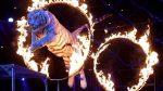 Portugal prohíbe los animales salvajes en los circos