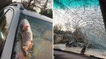Un bagre le cayó del cielo y rompió el parabrisas de su carro mientras conducía