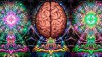 Científicos identifican la zona del cerebro involucrada en las experiencias espirituales