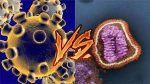 Diferencias y Semejanzas: Coronavirus VS Gripe