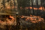 FOTOS | Bomberos controlan gran incendio forestal en Portugal