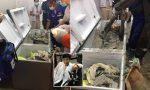 Encuentran el cadáver de una millonaria dentro de un refrigerador