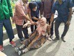 VIDEO   Al menos 20 muertos en un terremoto en el este de Indonesia