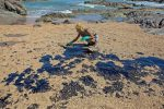 """Jair Bolsonaro alertó sobre el derrame de petróleo en las playas de Brasil: """"Lo peor está por venir"""""""