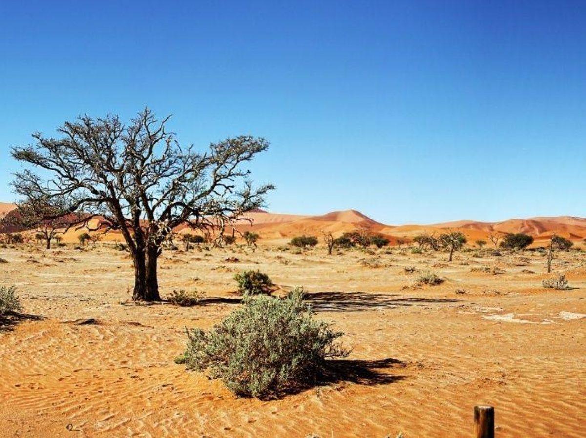 Alertan que el cambio climático trae más inundaciones y sequías.